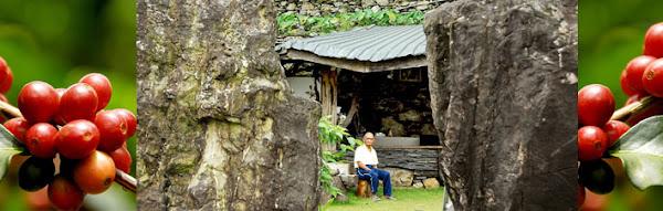 馬古都 莊園 MaKuDu Barony: 日曬法咖啡豆製作過程