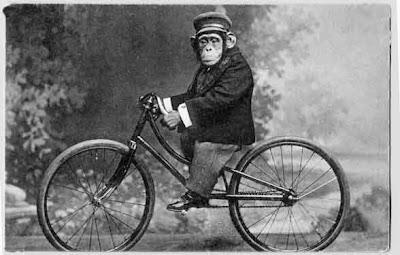 Mono + bici