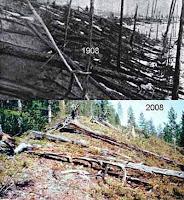 مرور 100 سنة على حادثة الإنفجار
