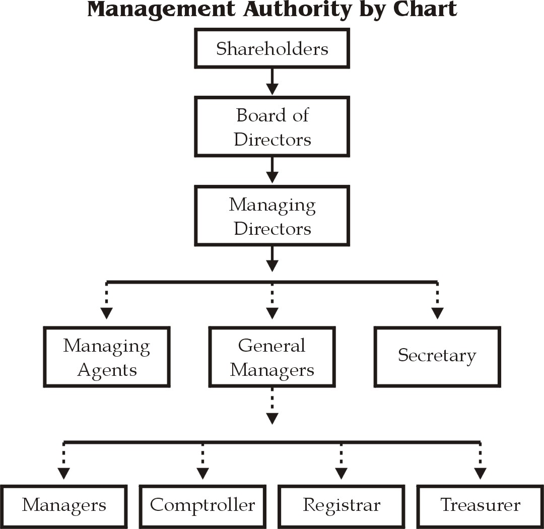 board of directors and management relationship definition