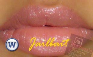 An Indian S Makeup Blog Urban Decay Fall 2008 Lipsticks