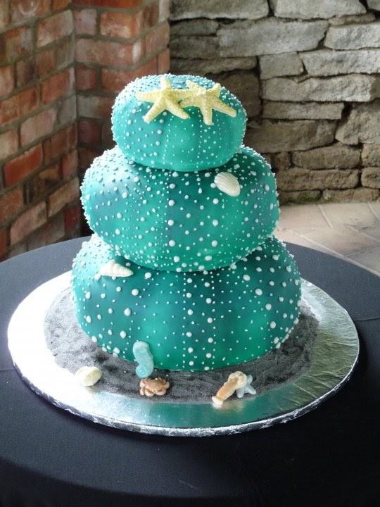 Kiwi Cakes: Kiwi Cake Decorator