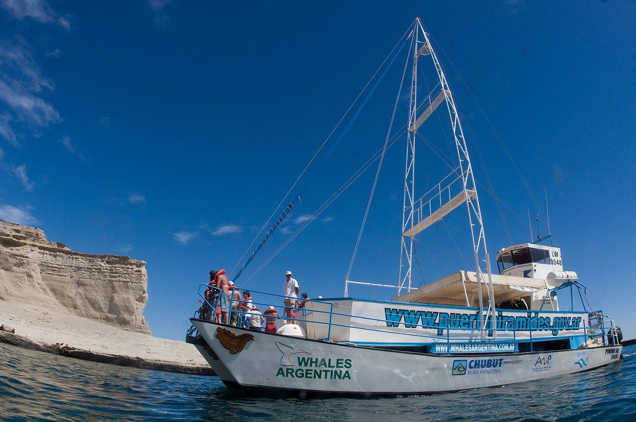 Catamarán haciendo un paseo náutico por la lobería de Punta Pirámides