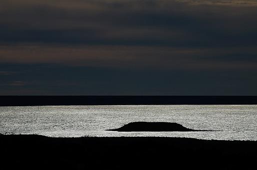 isla de los pajaros Península Valdés