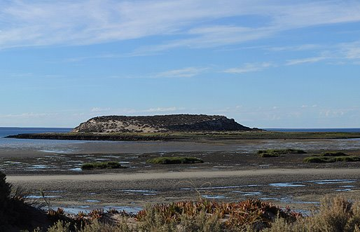 Isla de Los Pájaros Foto