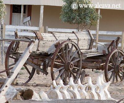 Carreta y esqueleto de Ballena en el Campo del Riacho San José