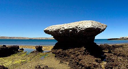 Marea Baja en Península Valdés