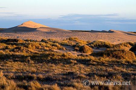 La estepa arbustiva termina y empiezan las dunas de Pardelas