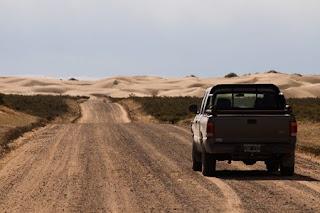 Camino a los medanos de Pardelas en Península Valdés