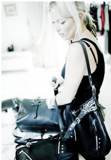 Le sac parfait de Kate   Les chroniques d'une blonde