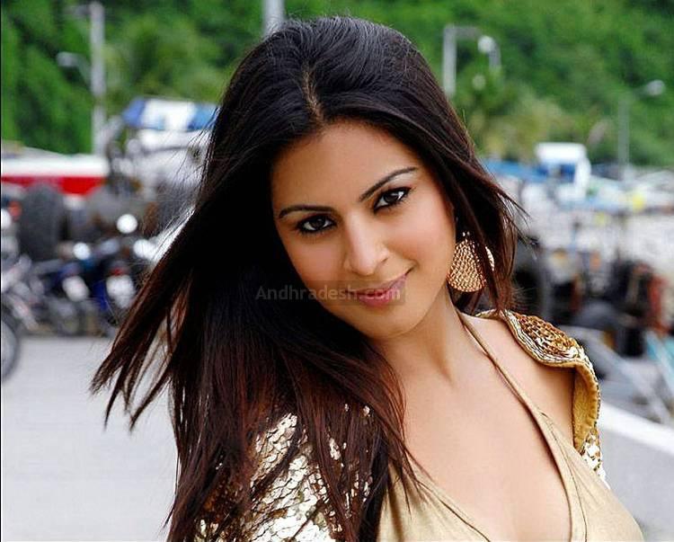 Shraddha Arya Telugu Actress Hot Latest Photo Gallery