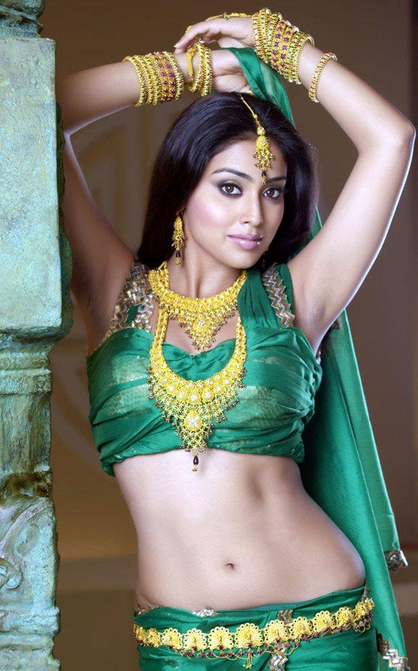 Actress Shriya Saran Saree Navel Photos