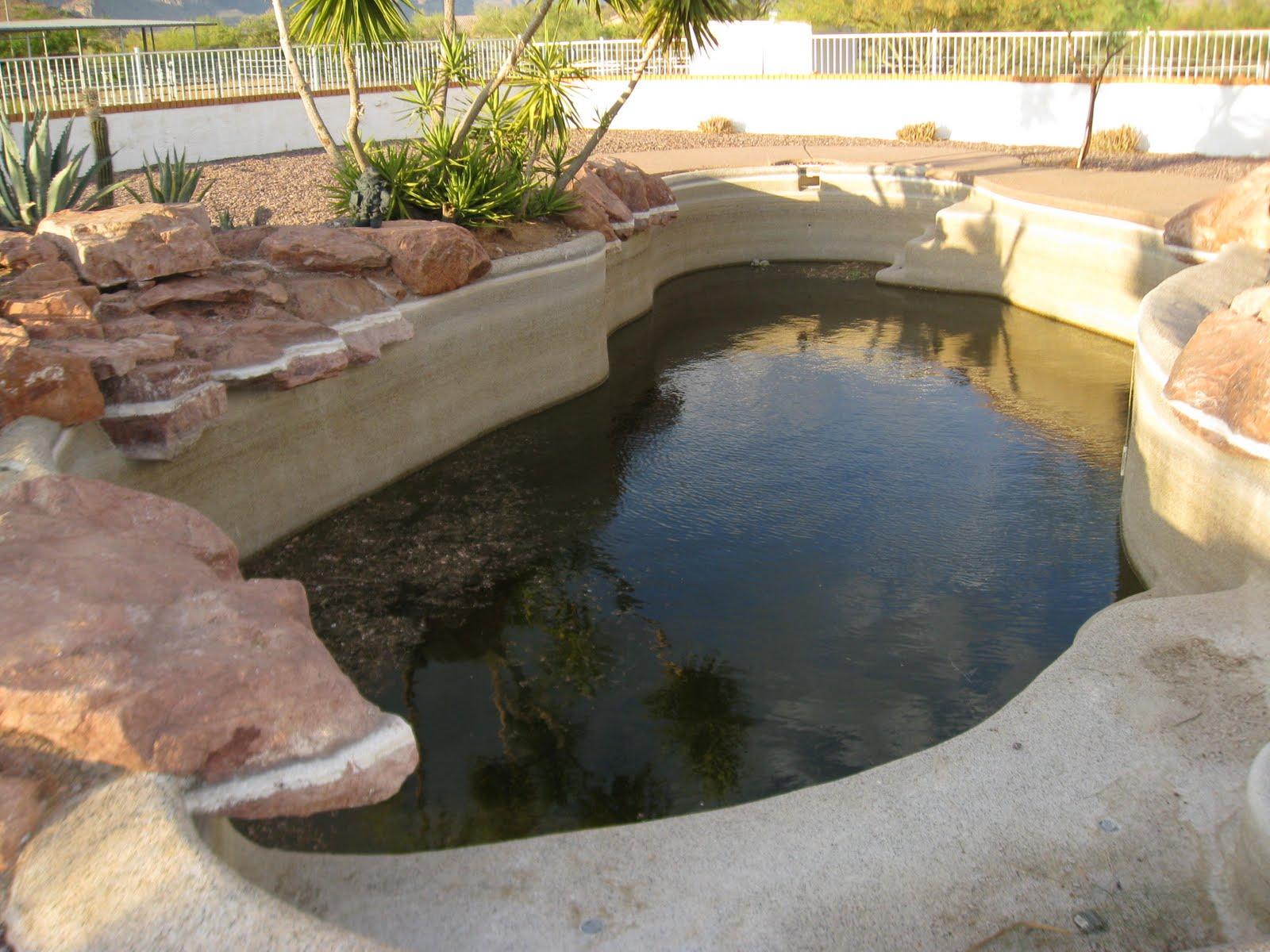 Pool Service By Pool Savers Green Pebbletec Pool