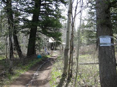 Pocatello 50 mile Scout Mountain