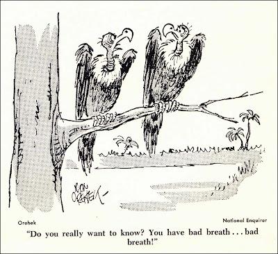 Don Orehek Cartoons: 218. Best Cartoons of the Year