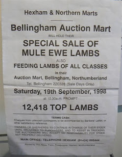 Bellingham Buyers Mart Kitchen Sink
