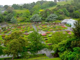 Lady Norwood Rose Garden Botanic Gardens Wellington New Zealand