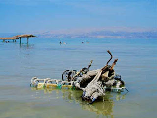 Salted Bicycles Dead Sea Ein Gedi Spa Israel