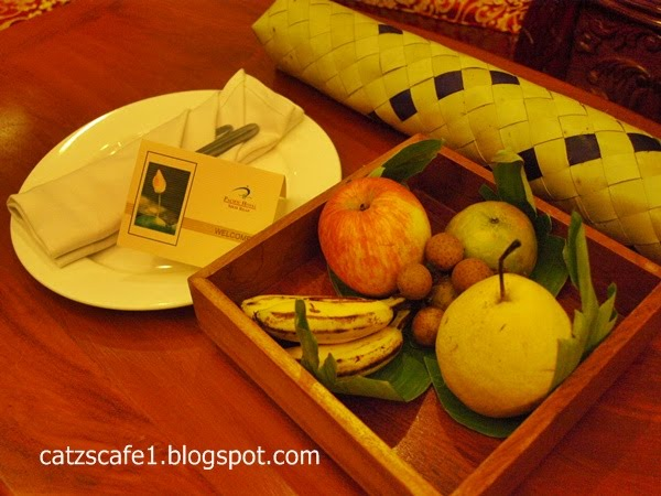Catz S Cafe Siem Reap Cambodia Part 2