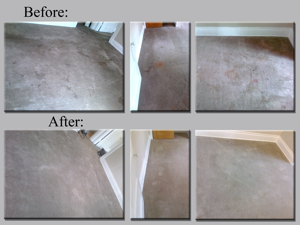 Pittsburgh Carpet Cleaning Nasty Job Cleaned Right