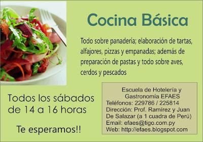 Escuela De Hoteleria Y Gastronomia Efaes Curso De Cocina Basica