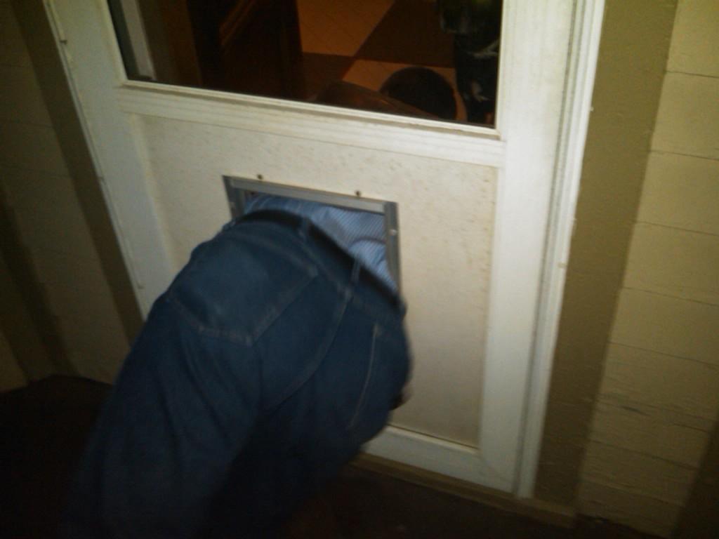 Megan rain stuck in doggy door
