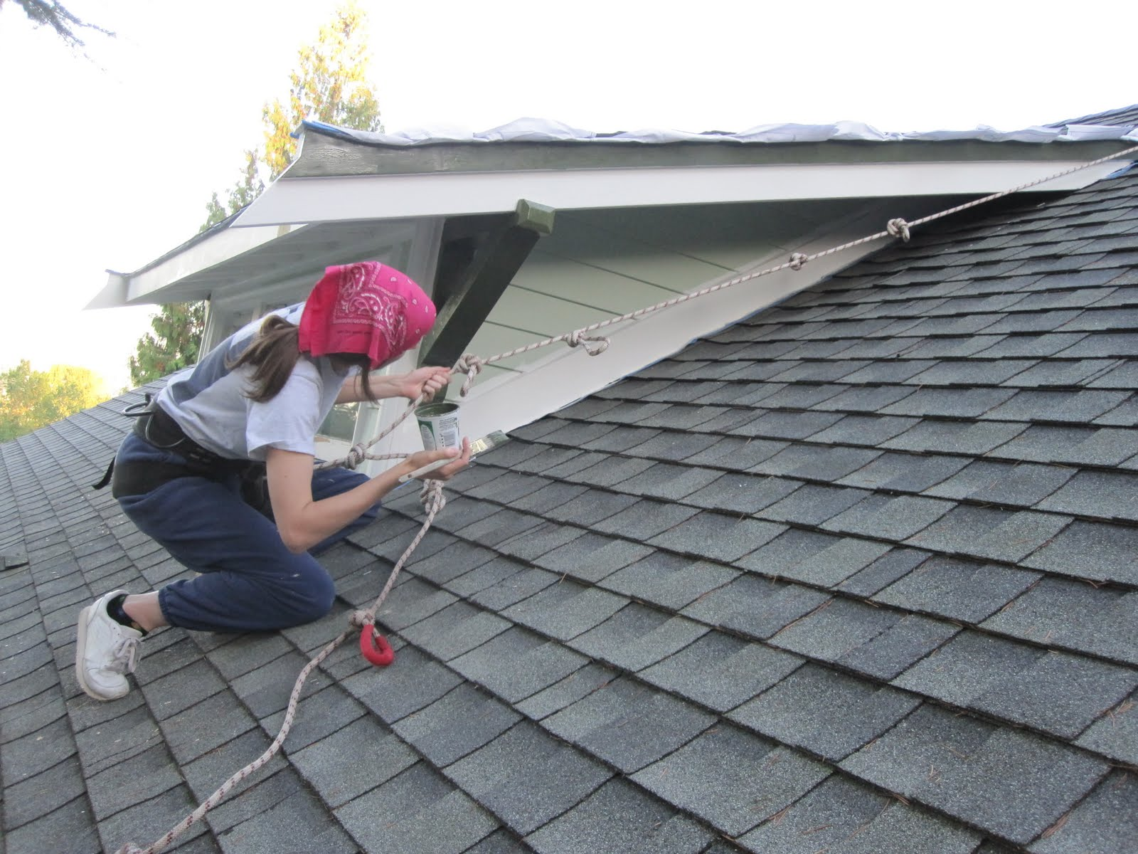 The Brown Menagerie: How to paint the dormer's