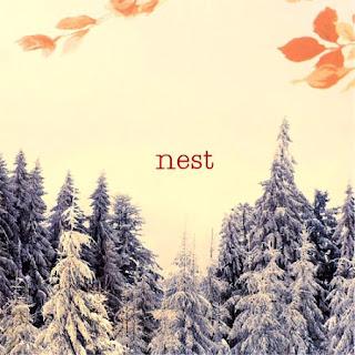 http://2.bp.blogspot.com/_X94hEuCVfOc/SGqPBj5PNHI/AAAAAAAAADo/qMn8_gWQHwI/s320/Nest_cover.jpg