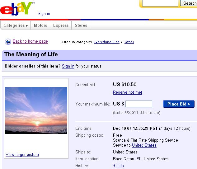 Image result for the meaning of life ebay ad