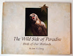 "My book, ""The Wild Side of Paradise,"" about birds in our wetlands"