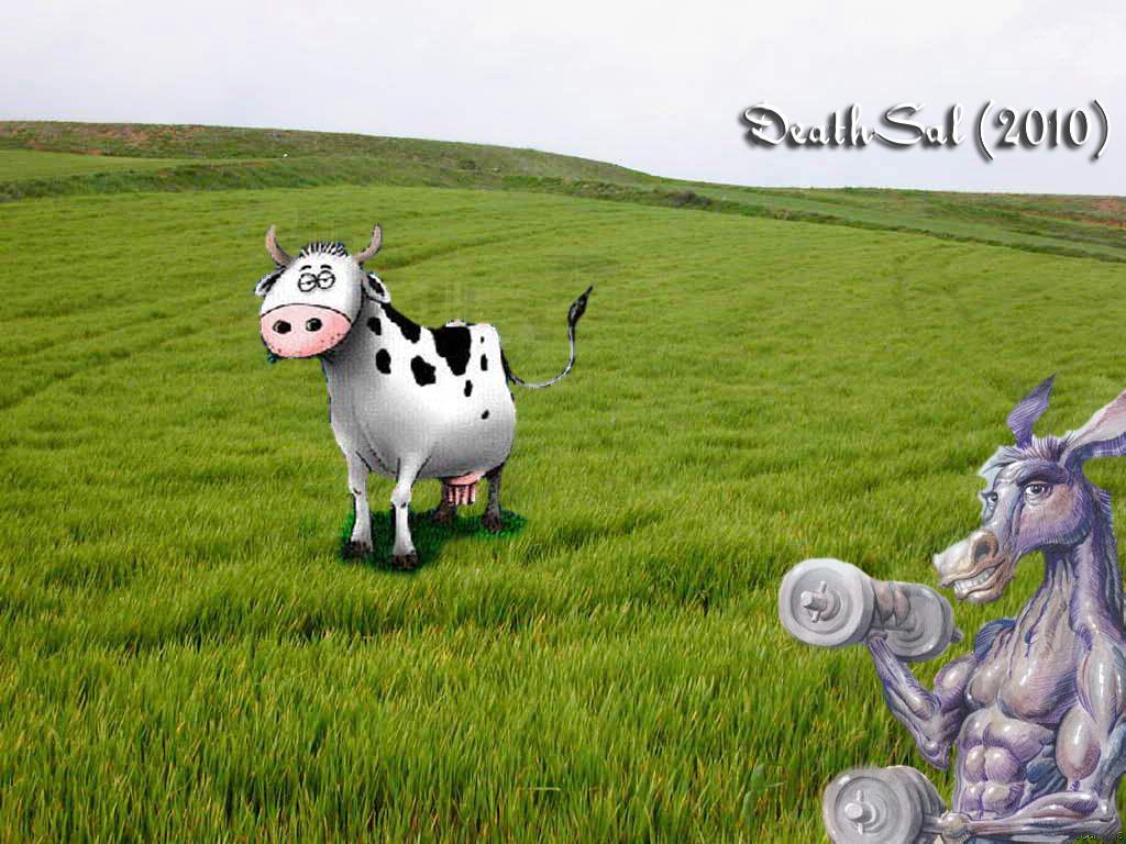 con Un vaca burro una