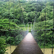 Thenmala-first Eco-tourism center in India|Perfect place to explore nature|Waterfalls-Meter Guage|Suspension Bridge|Tree Top Stay