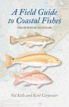 A Field Guide to Coastal Fishes, From Maine to Texas by Val Kells & Kent Carpenter