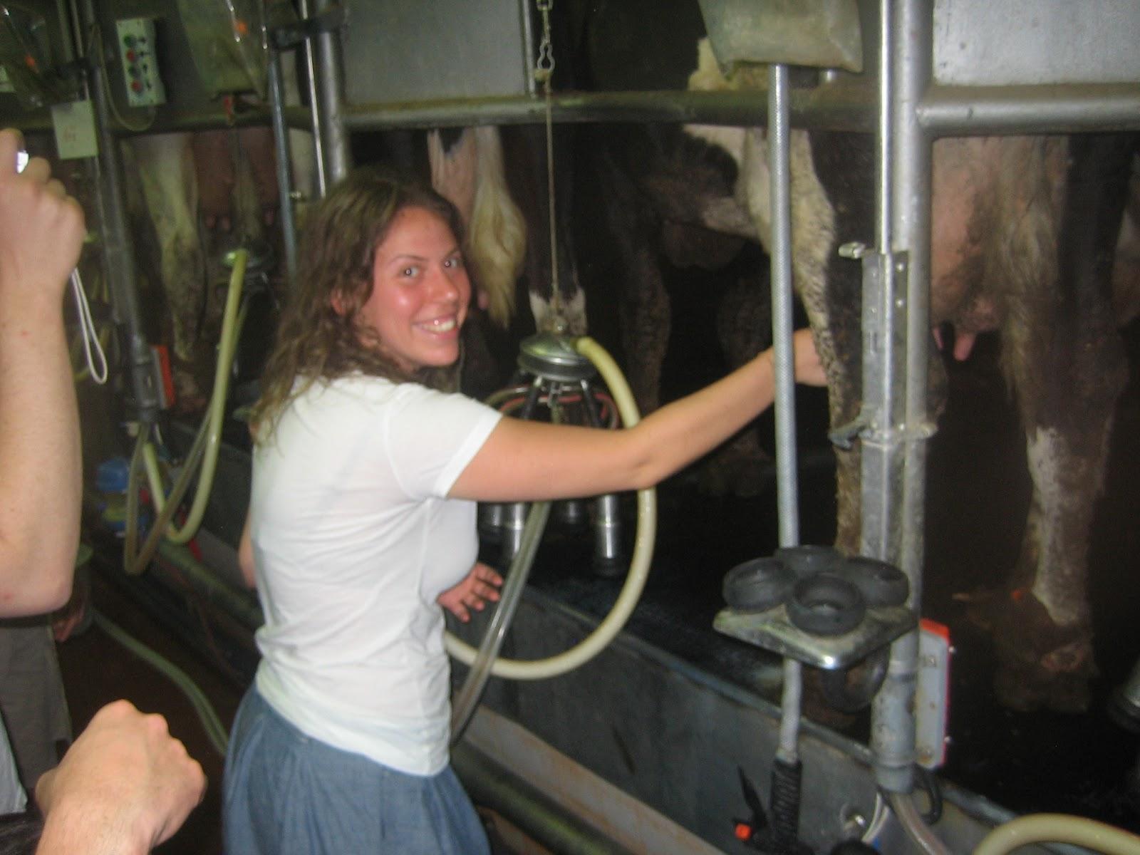 Girls milking boys