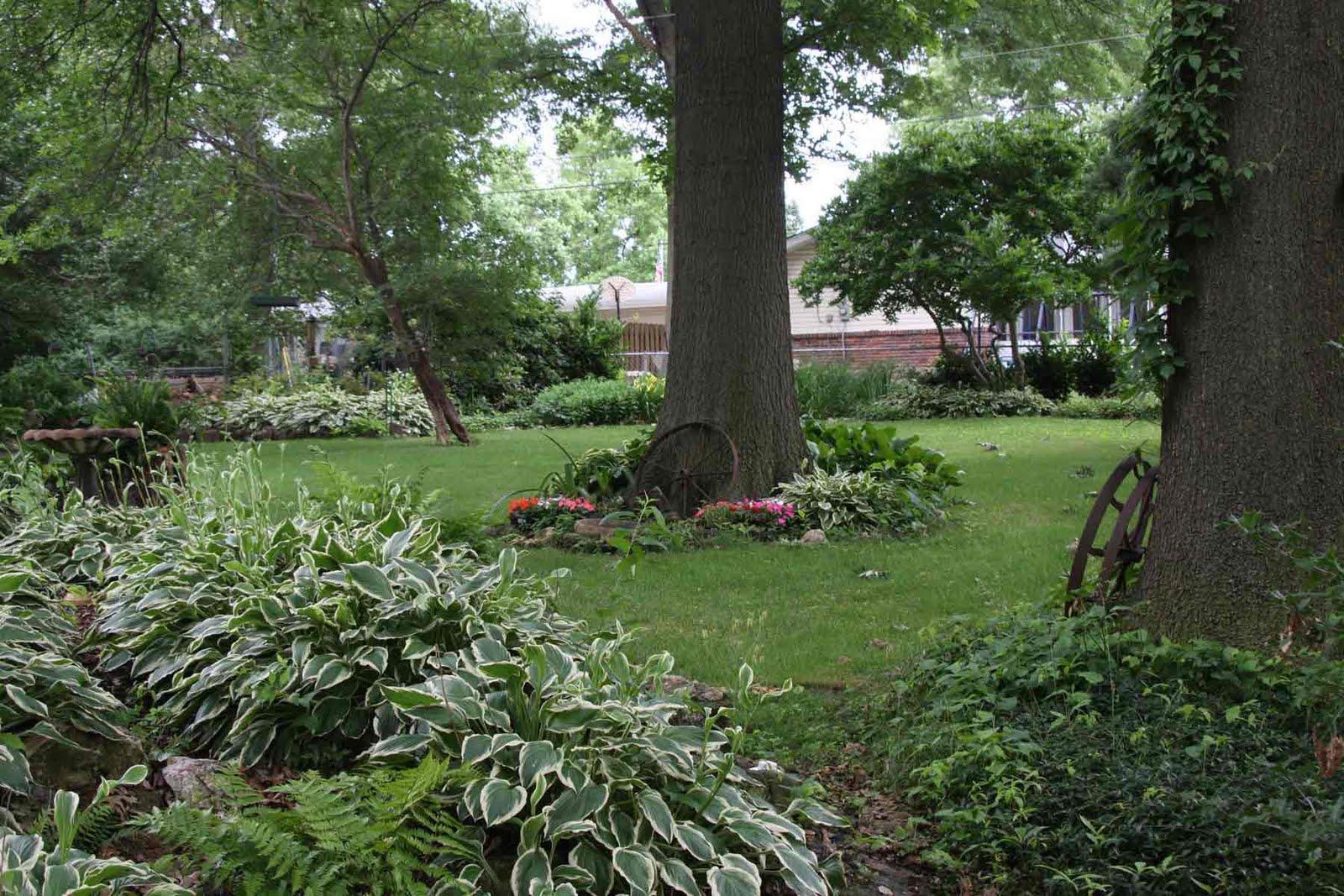 World Bird Sanctuary: Backyard Exterminators