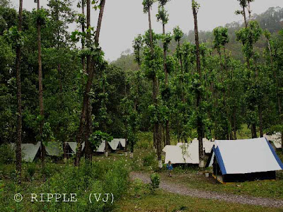 Camping @ SaatTaal, Uttrakhand, INDIA: There are many  places  for camping at SatTaal. There are some groups who manage for your stay, food, trekking, adventurous sports etc... After fours years I don't even remember the name of place where we stayed.: Posted by Ripple (VJ) on PHOTO JOURNEY @ www.travellingcamera.com : ripple, Vijay Kumar Sharma, ripple4photography, Frozen Moments, photographs, Photography, ripple (VJ), VJ, Ripple (VJ) Photography, Capture Present for Future, Freeze Present for Future, ripple (VJ) Photographs , VJ Photographs, Ripple (VJ) Photography : These Camps were build on concrete platforms.. It was really an amazing experience to stay in these camps .... These can be closed completely as per your convenience.... They have nets for ventilation ...