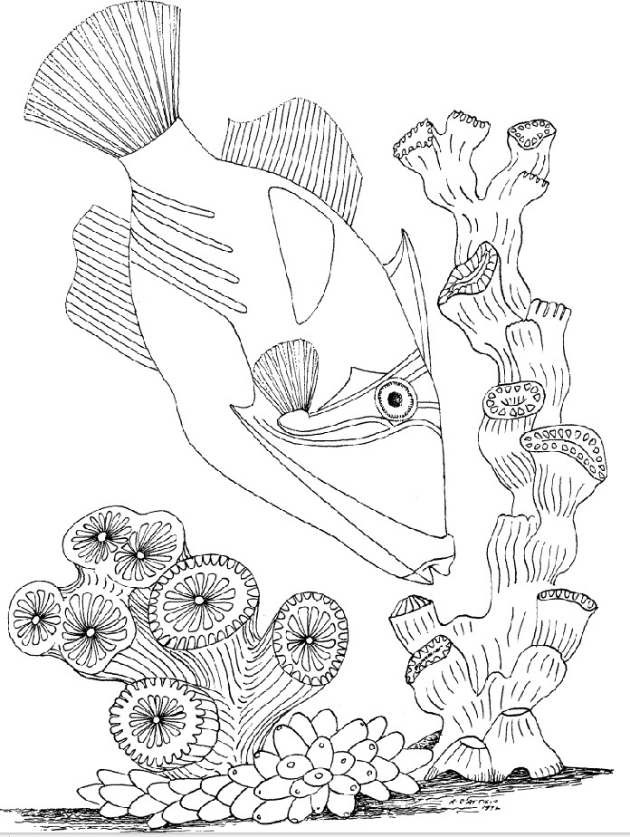 underwater coloring pages online - photo#44