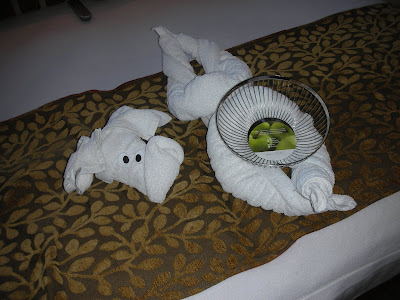 Cruise lines with a fruit bowl in your stateroom