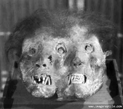 Misteri Mummi Berwajah Iblis