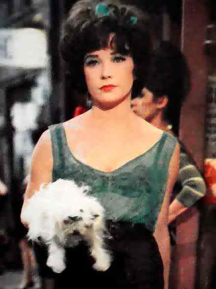 Shirley maclaine terms of endearment - 5 9