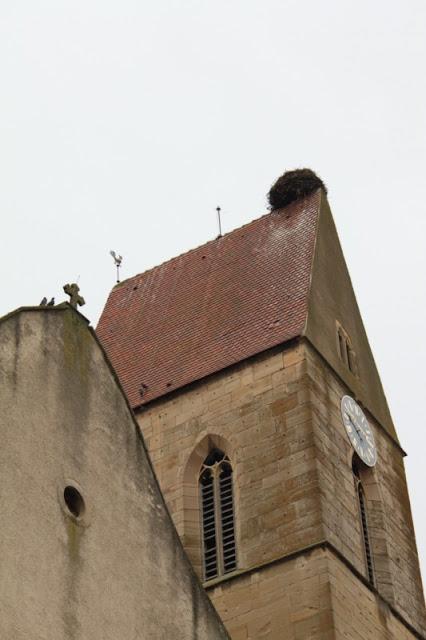Eguisheim-Nido di cicogne