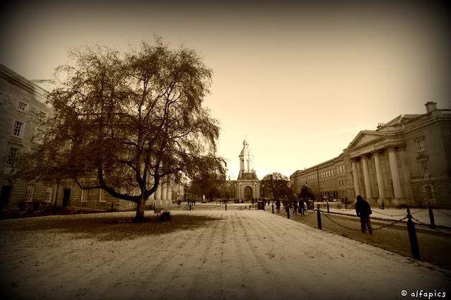 Trinity college-Dublino