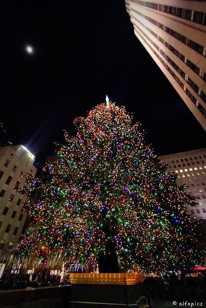 Albero di Natale al Rockefeller center-New York