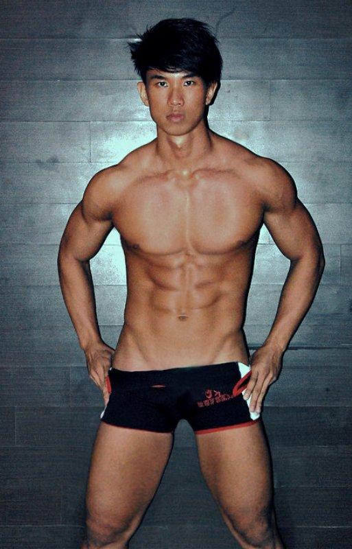 gay escort korea