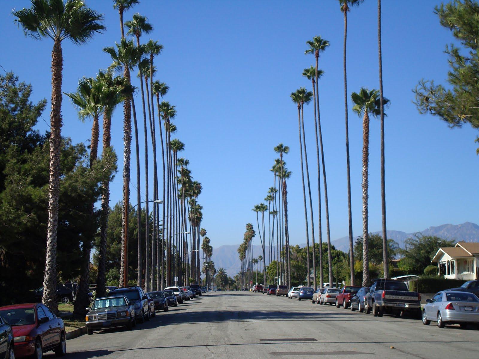 Lumber In Los Angeles Ca