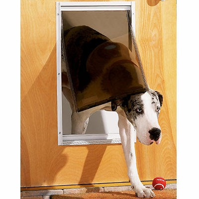 Dog Door Replacement Flaps Why Bother Pictures Of Dogs