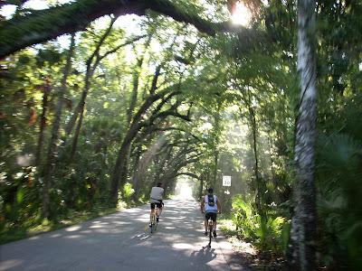The Ormond Loop Bicycle Ride