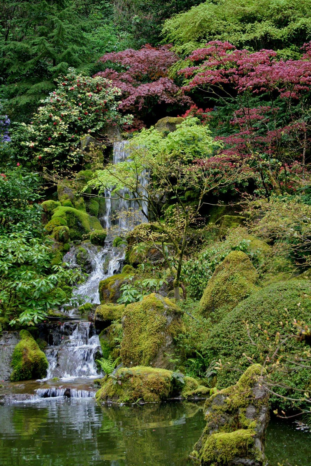 Portland Japanese Garden Store: Garden Bytes From The Big Apple: WATER