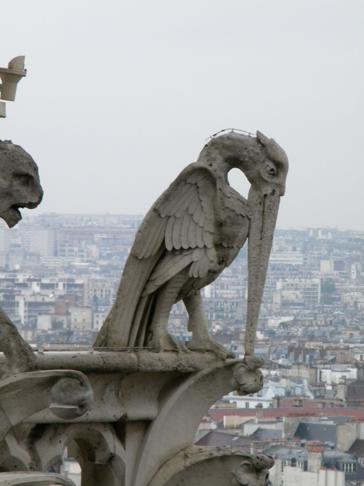 Returning To The Fatherland Notre Dame Gargoyles
