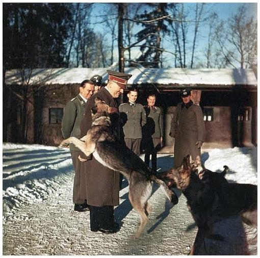 PICTURES FROM HISTORY: Rare Images Of War, History , WW2, Nazi Germany: Some rare photos of ADOLPH HITLER